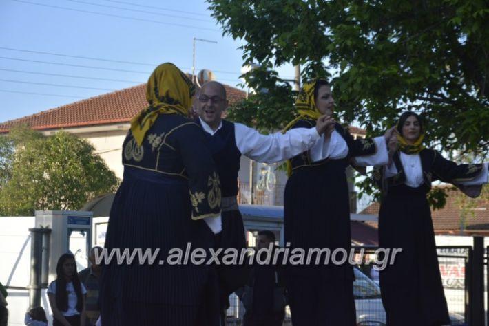 alexandriamou_agkathiapanigiri2019109