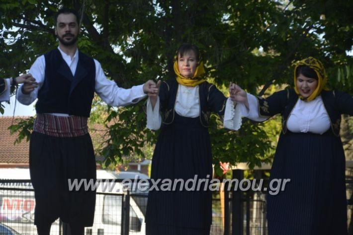 alexandriamou_agkathiapanigiri2019111