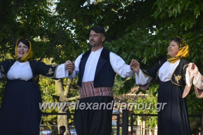 alexandriamou_agkathiapanigiri2019112