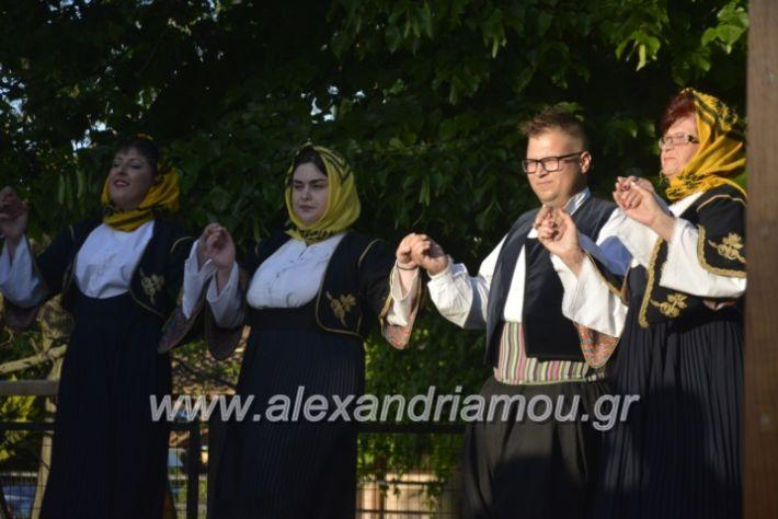 alexandriamou_agkathiapanigiri2019113
