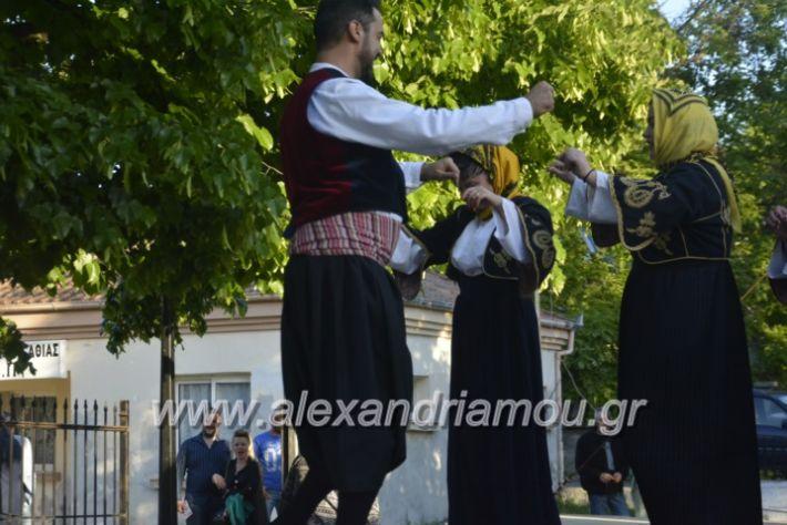 alexandriamou_agkathiapanigiri2019117