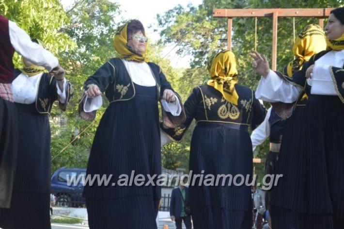 alexandriamou_agkathiapanigiri2019118