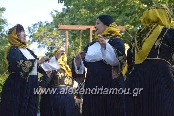 alexandriamou_agkathiapanigiri2019119