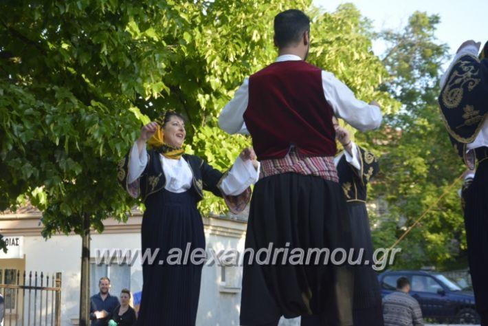 alexandriamou_agkathiapanigiri2019120