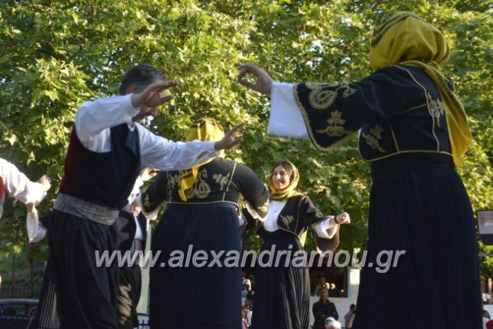 alexandriamou_agkathiapanigiri2019121
