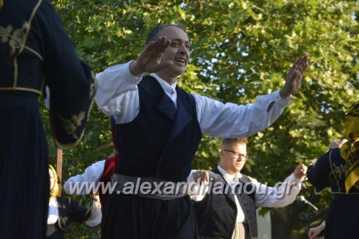 alexandriamou_agkathiapanigiri2019122