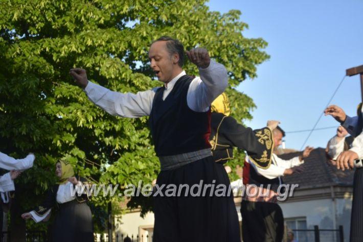 alexandriamou_agkathiapanigiri2019124