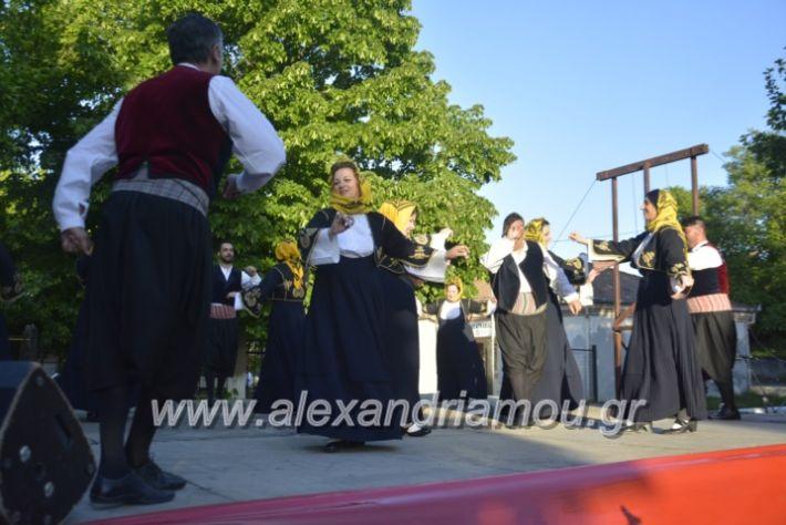 alexandriamou_agkathiapanigiri2019127