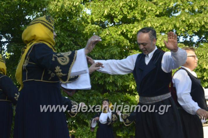 alexandriamou_agkathiapanigiri2019128