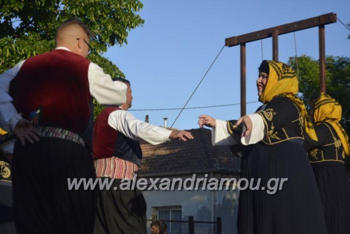 alexandriamou_agkathiapanigiri2019129