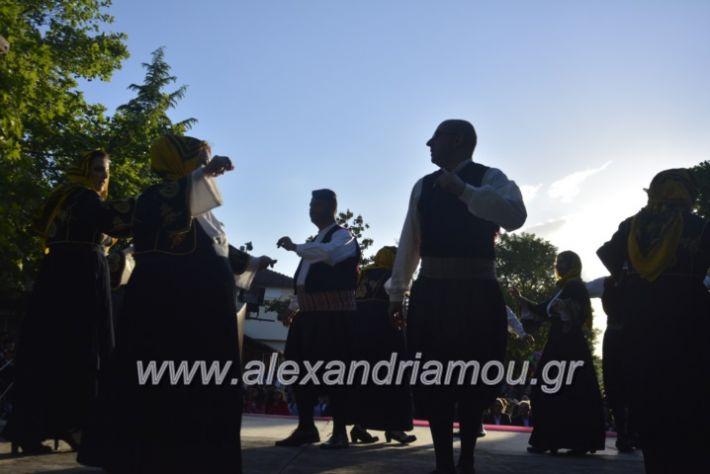 alexandriamou_agkathiapanigiri2019132