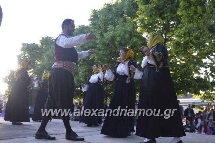alexandriamou_agkathiapanigiri2019135