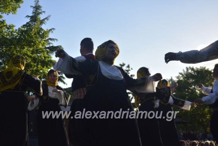 alexandriamou_agkathiapanigiri2019136