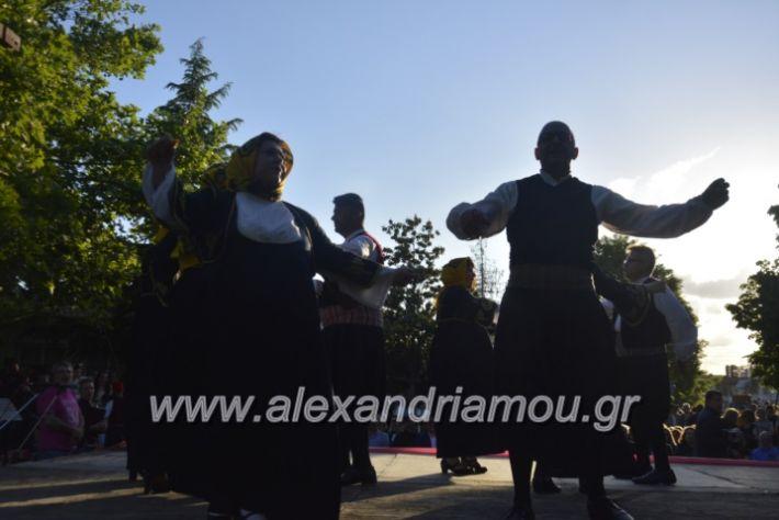 alexandriamou_agkathiapanigiri2019138