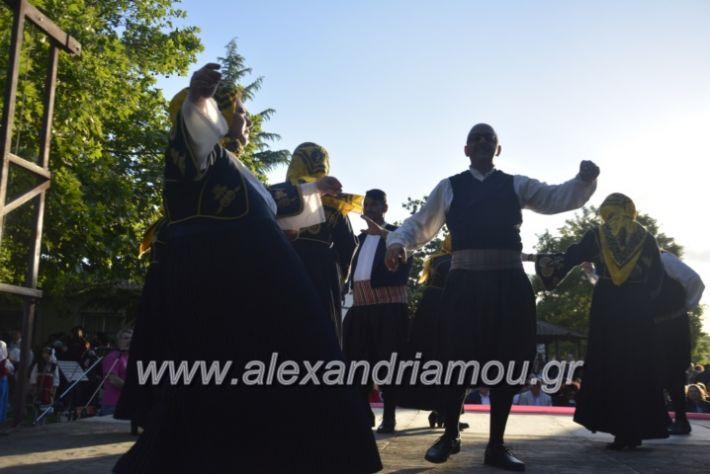 alexandriamou_agkathiapanigiri2019139