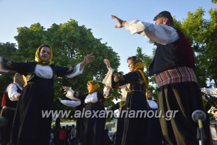 alexandriamou_agkathiapanigiri2019151