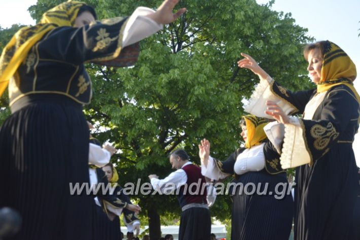 alexandriamou_agkathiapanigiri2019152