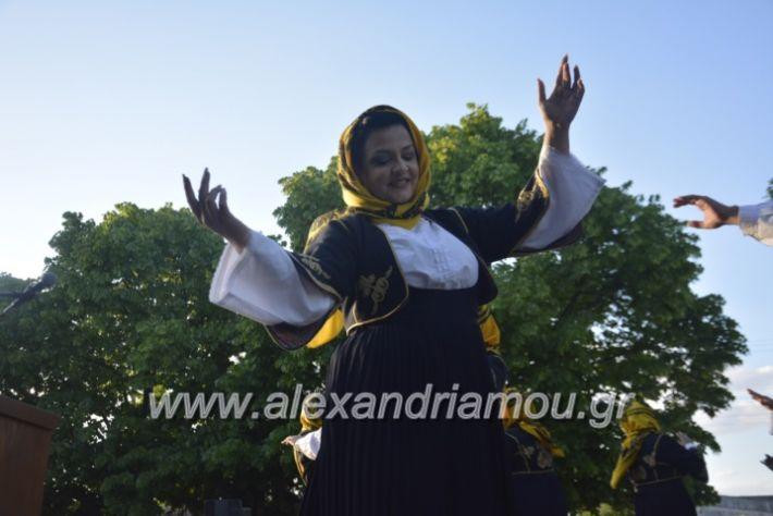 alexandriamou_agkathiapanigiri2019153