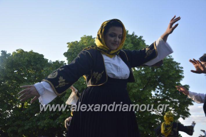 alexandriamou_agkathiapanigiri2019154