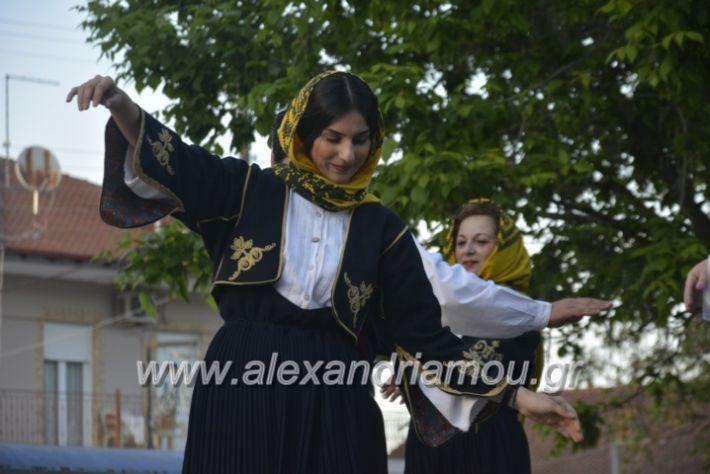 alexandriamou_agkathiapanigiri2019167