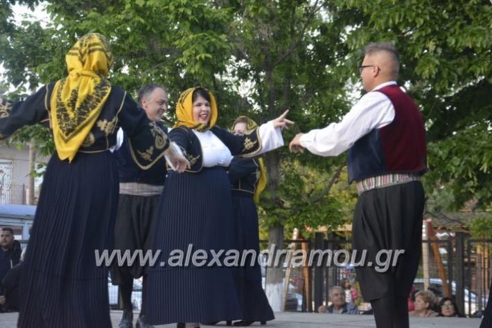 alexandriamou_agkathiapanigiri2019168