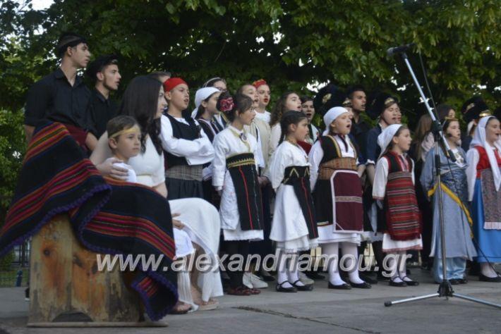alexandriamou_agkathiapanigiri2019199