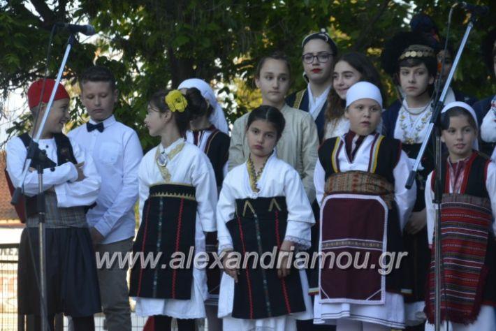 alexandriamou_agkathiapanigiri2019205