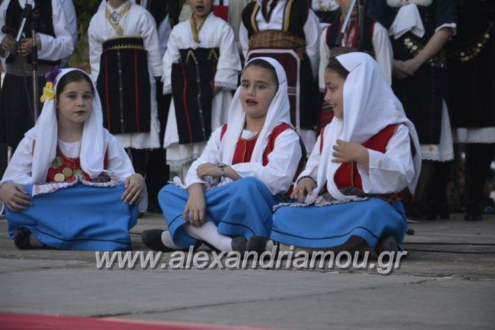 alexandriamou_agkathiapanigiri2019215