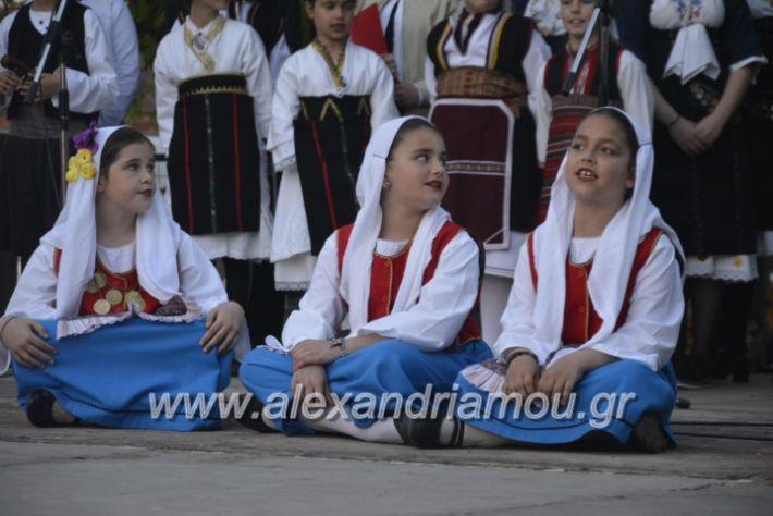 alexandriamou_agkathiapanigiri2019216
