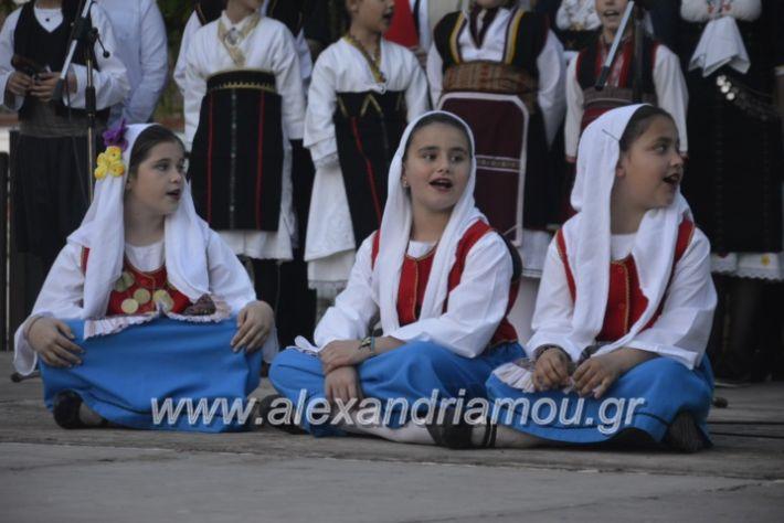 alexandriamou_agkathiapanigiri2019217