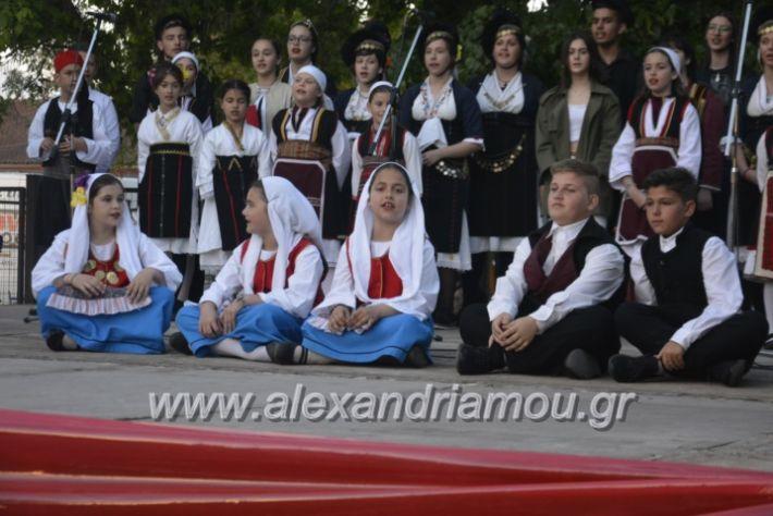 alexandriamou_agkathiapanigiri2019218