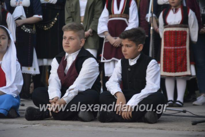 alexandriamou_agkathiapanigiri2019219