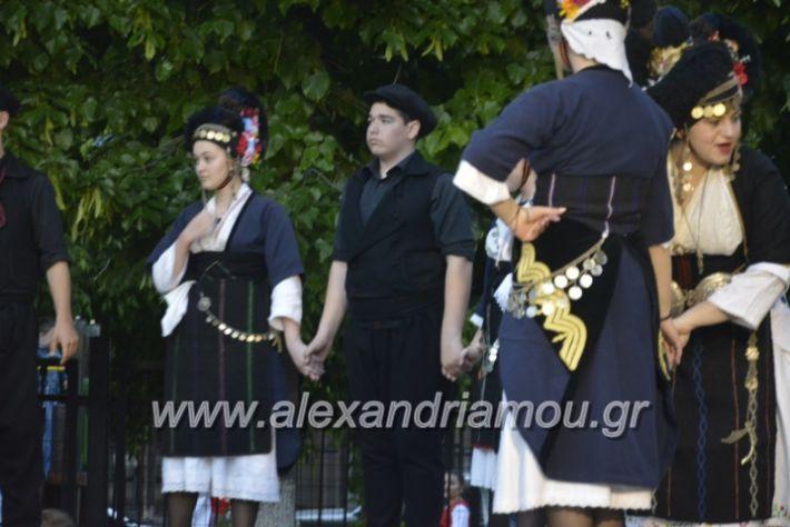 alexandriamou_agkathiapanigiri2019230