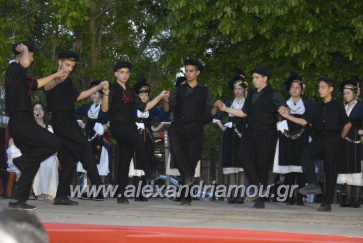 alexandriamou_agkathiapanigiri2019247