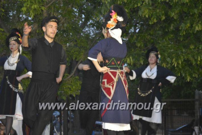 alexandriamou_agkathiapanigiri2019249