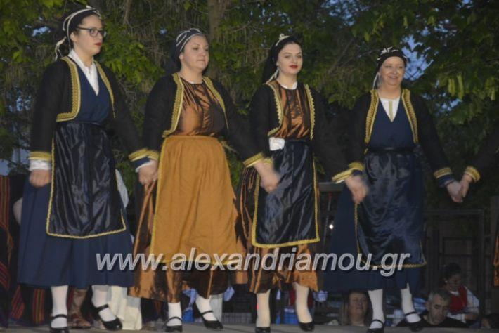 alexandriamou_agkathiapanigiri2019253