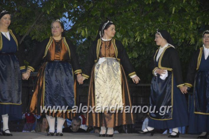 alexandriamou_agkathiapanigiri2019254