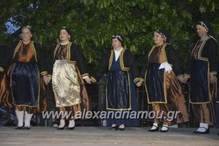 alexandriamou_agkathiapanigiri2019256