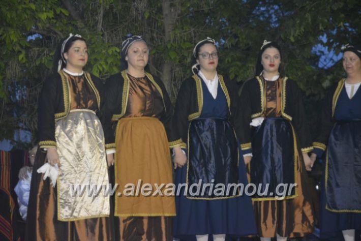 alexandriamou_agkathiapanigiri2019260