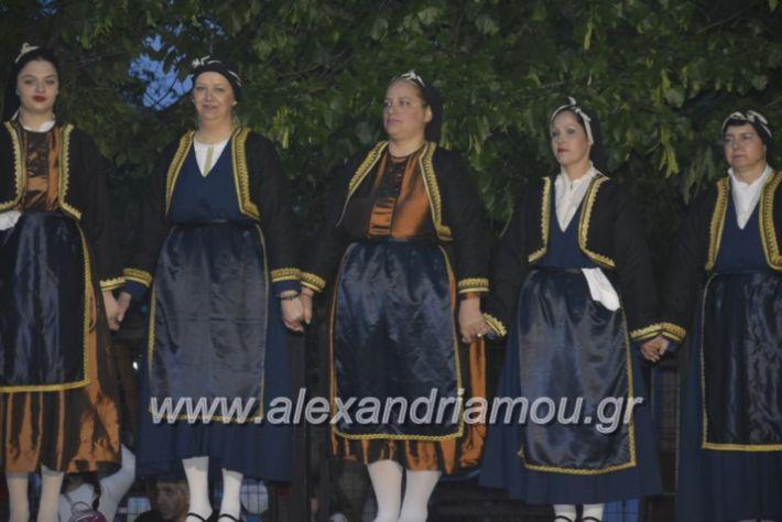 alexandriamou_agkathiapanigiri2019261