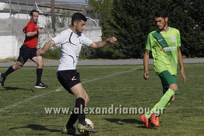 alexandriamou_paok_ag.georgios031