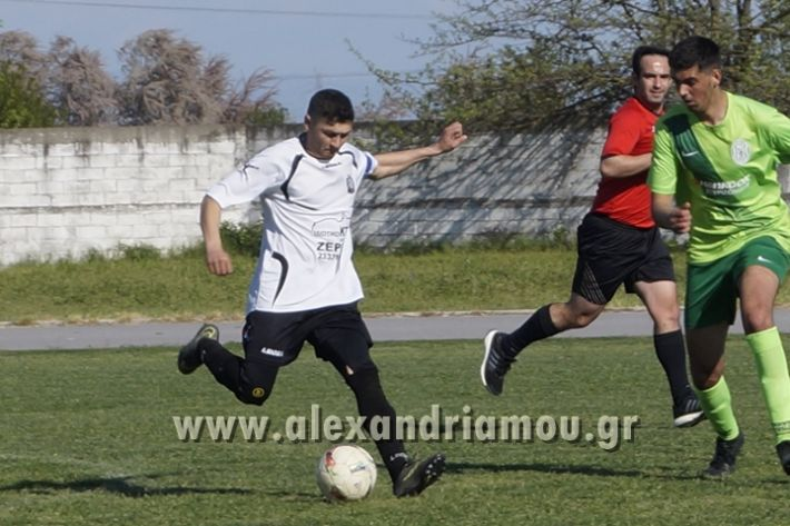 alexandriamou_paok_ag.georgios037