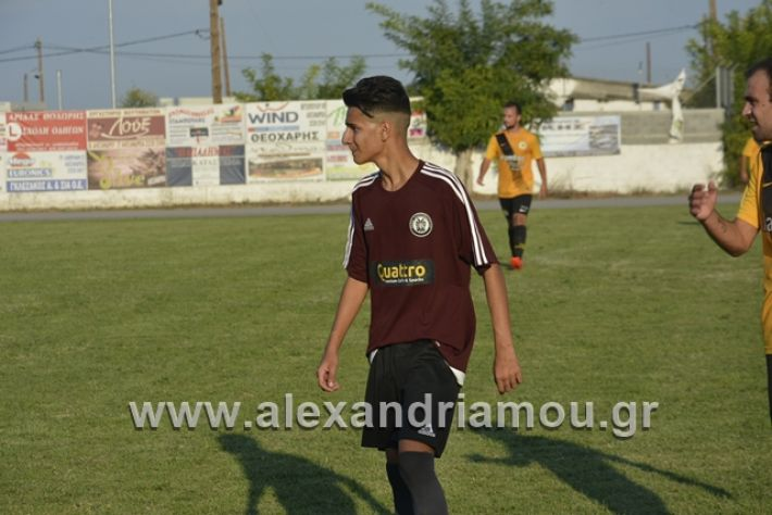 alexandriamou.gr_paokkopanos078