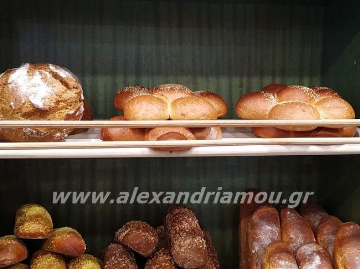 alexandriamou.gr_papazoglou2019029