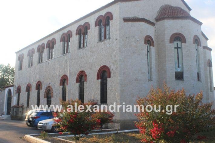 alexandriamou.gr_νισιπεριφορα2019000
