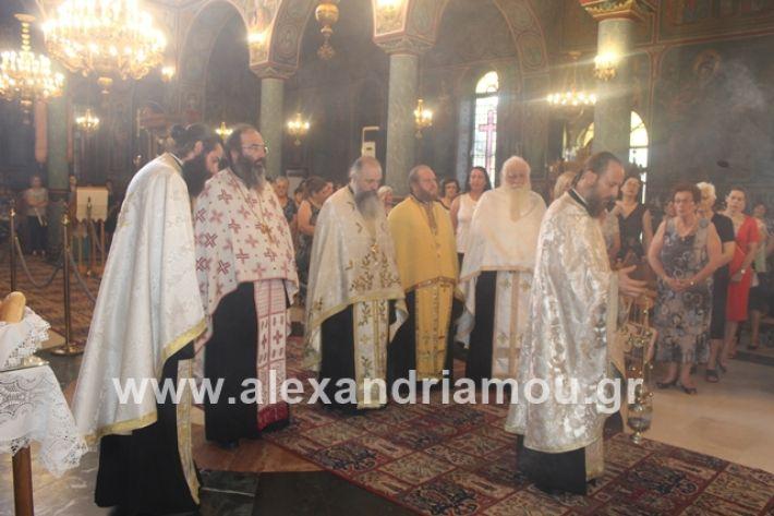 alexandriamou.gr_νισιπεριφορα2019025