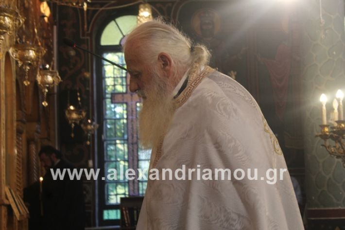 alexandriamou.gr_νισιπεριφορα2019036