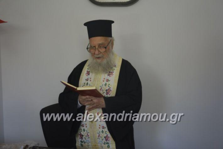 alexandriamou_pikefiegkania2019041