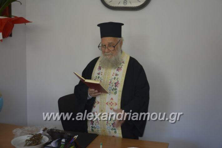 alexandriamou_pikefiegkania2019042