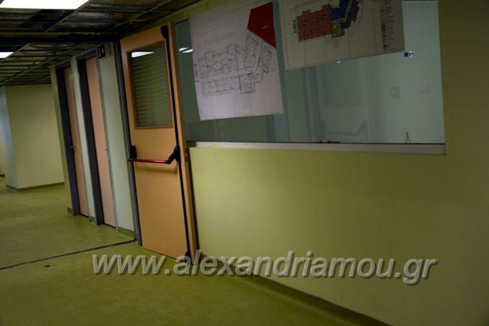 alexandriamou.gr_piogkas2020DSC_0671